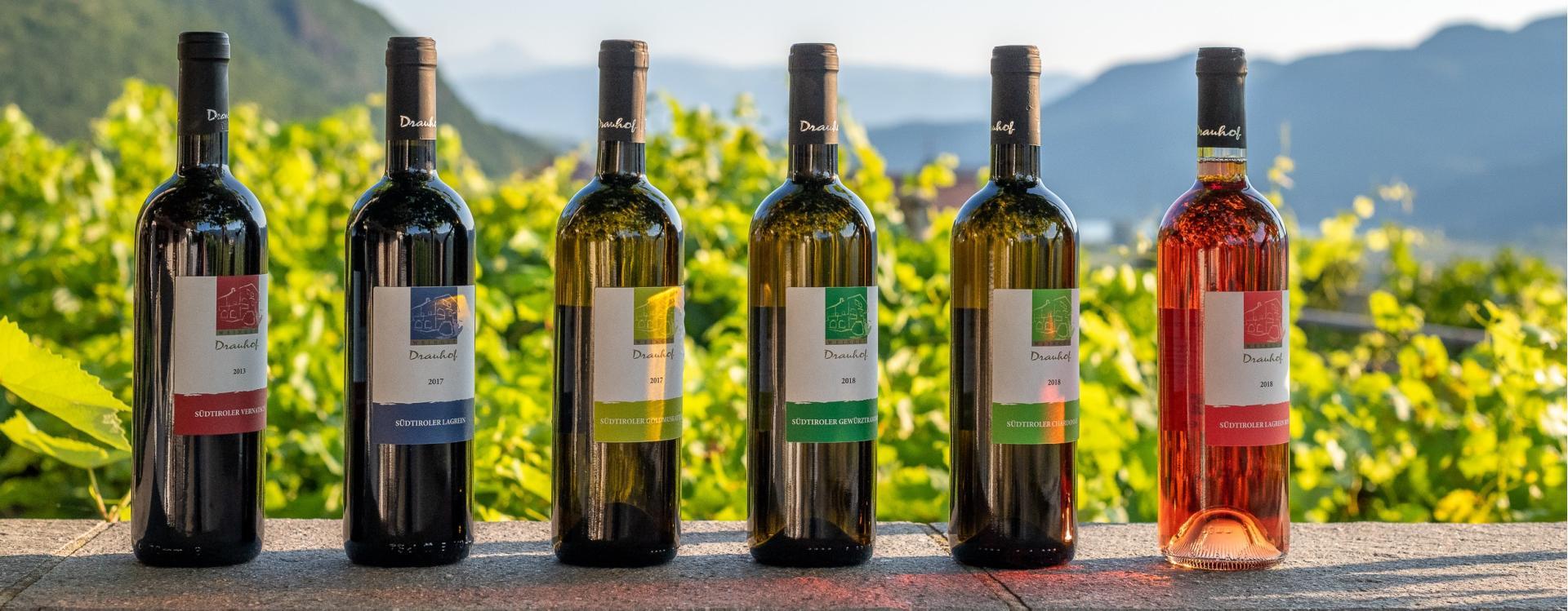 Drauhof Weinauswahl