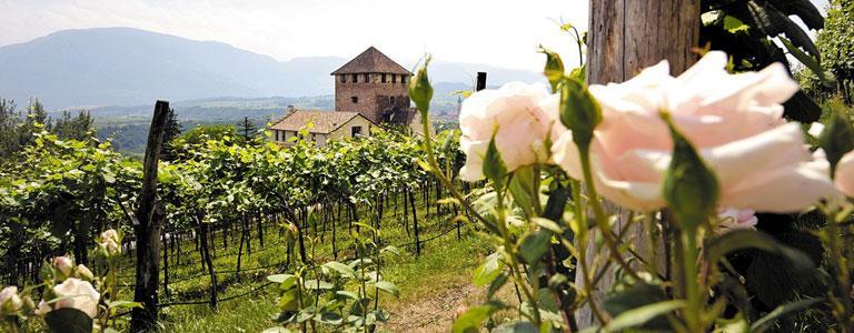 Schloss Korb